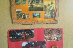 Dia Nacional da Agricultura na Escola 2017
